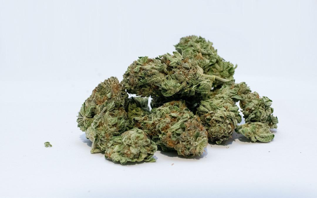 Cannabis-Anbau in Deutschland: Zuschlag erteilt